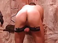 Tied gay, Tied couple, Tie gay, Pumping cock, Pumped up, Pumped cock