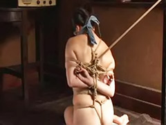 Japanese bondage, Bondage japanese, Bondage couple, Bondage asian, Bondag, Asian japanese