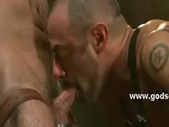 Stronge, Strong sex, Pervertion, Hunks gay, Domination gay, Domination bondage