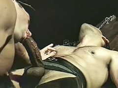 Sexi gay, Dudes, Sexy gays, Sexy blowjob, Sex fetish, Leather gay