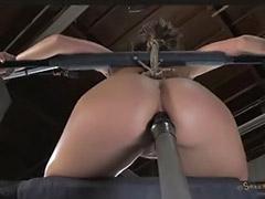 Solo bondage anal, Solo bondage, Solo big ass toy, Solo big ass anal, Solo big anal, Solo ass toys