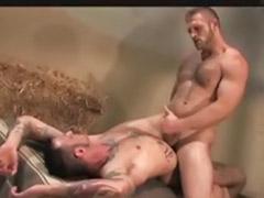 Fun gay, Couple fun, Barn sex, Gay barn, Gay sex