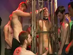 Wolf, Rex, Dayton, Group bondage, Gay group amateur, Gay bondage amateurs