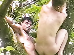 Tree s, Tree, Hard gay sex, Hard wank, Fuck hard gay, Gay wanking outdoors