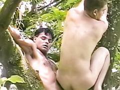 Tree s, Tree, Hard gay sex, Hard wank, Fuck hard gay, Gay wanking outdoors