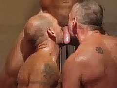Hairy gay anal, Rimming group, Hairy rimming, Hairy sex gay, Hairy anal group, Hairy anal gay