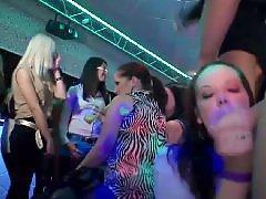 Party, Public