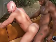 Pissing, Gay piss